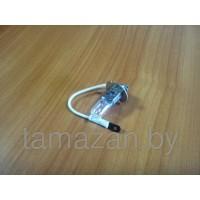 Лампочка в противотуманку АКГ 24-70 Н3